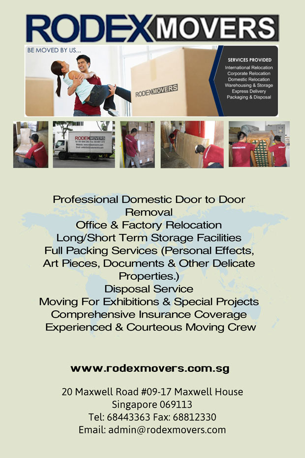 Professional Movers International Relocation Services