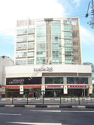 Balestier 288 singapore condo directory for 2004 novena peranakan cuisine