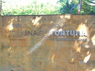 CAVENAGH FORTUNA