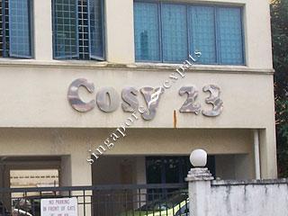 COSY 23
