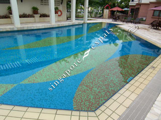 Pictures Springdale Condo Singapore on Singapore Condo  Apartment Pictures     Buy  Rent Fairmount