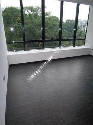Singapore Property Rental Apartment Condo For Rent Rent Reignwood Hamilton Scotts At
