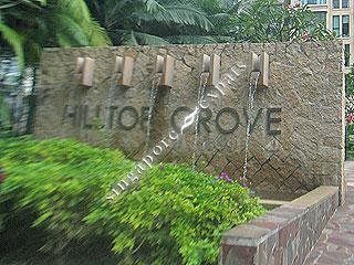 HILLTOP GROVE