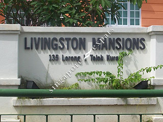 LIVINGSTON MANSIONS
