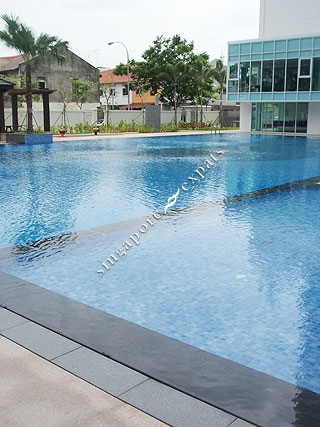 Buy Rent Mera Springs At 81 83 Carlisle Road Singapore Condo Apartment Pictures