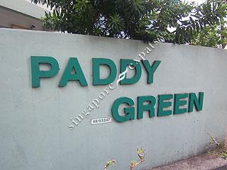 PADDY GREEN