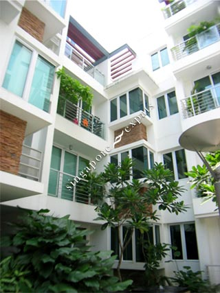 Singapore Condo Apartment Pictures Buy Rent Stevens
