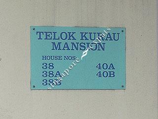 Telok Kurau Park Singapore Pictures on Telok Kurau Mansion   Singapore Condo Directory
