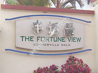 THE FORTUNE VIEW