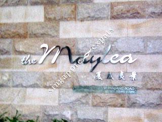 THE MAYLEA