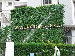 WATERFRONT GOLD
